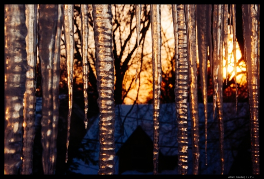 Icicles and Sun