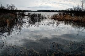 Reeds Lake tonemapped