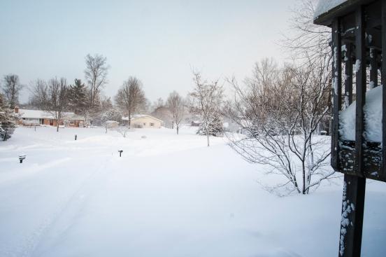 Snowpocalypse-10small