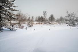Snowpocalypse-11small