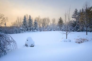 Snowpocalypse-12small
