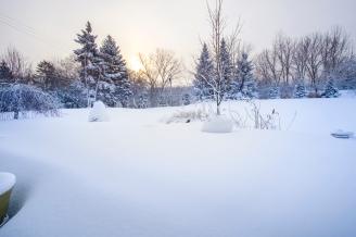 Snowpocalypse-4small
