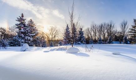 Sun Snow-1small