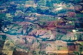 mw farms2