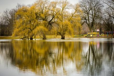 Grand River Park-1