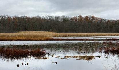 Reeds Lake telephoto-5