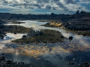 lava coast tide pools