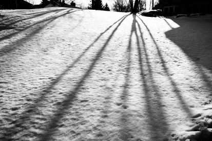 shadows 1 C1